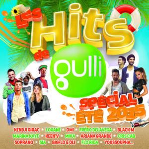 Les Hits de Gulli Spécial été 2015