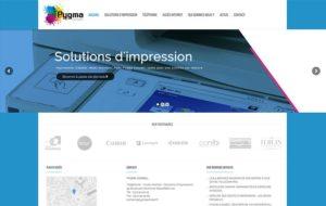 Site internet Pygma Conseil