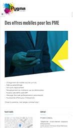 Site internet Pygma Conseil - smartphone