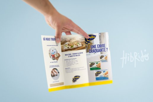 Leaflet Wasa format Triptyque